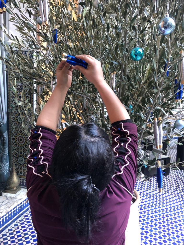 The amani wishing tree